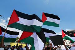 palestina_zastave